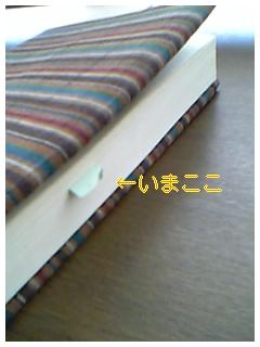 http://junjun.peewee.jp/blog/images/blog-photo-1177473493.48-0.jpg